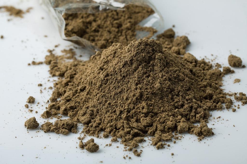 farine de grillon