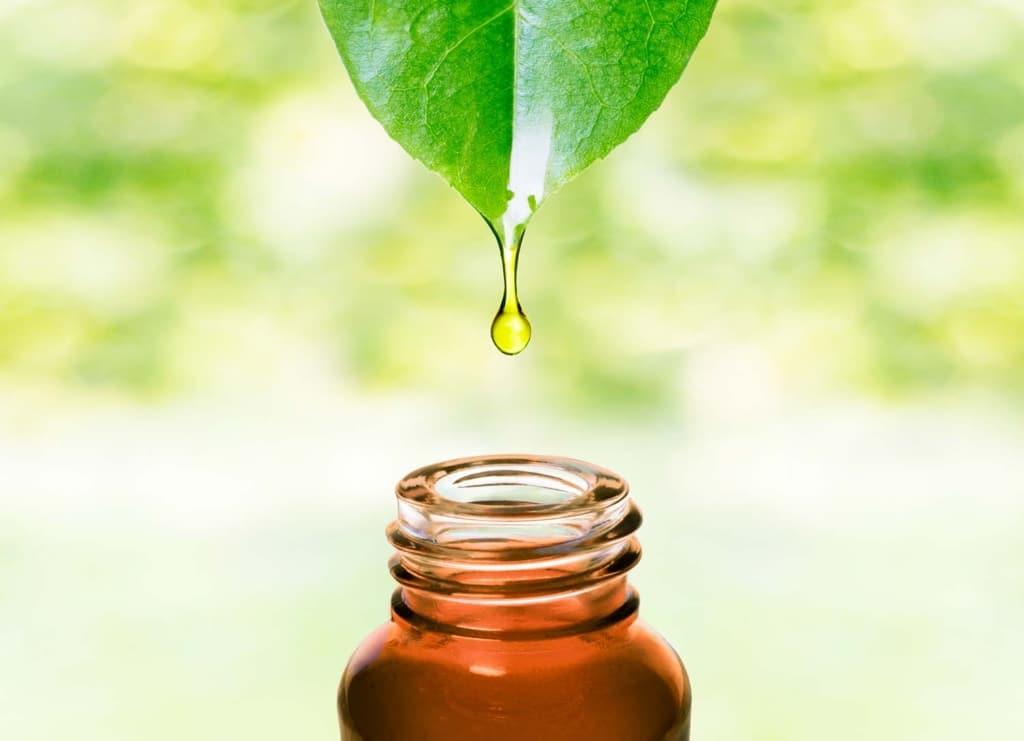 huile de moringa