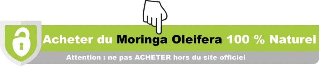 moringa oleifera boutique